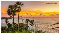 Pogrešate prave razglednice s potovanj? Slovenec ustvaril aplikacijo za pošiljanje pozdravov s Tajske